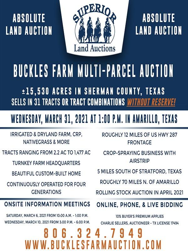 Buckle Auction