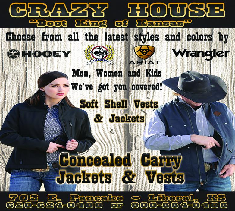 crazy house article new